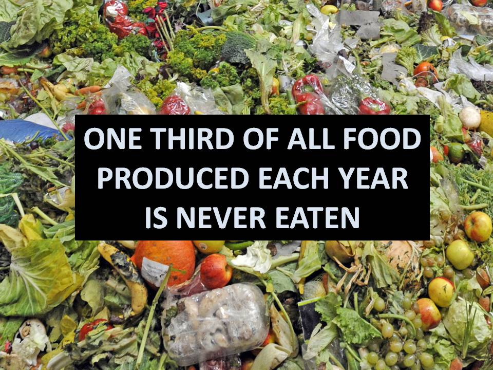 Progress Namibia - Two innovative ways to deal with food waste