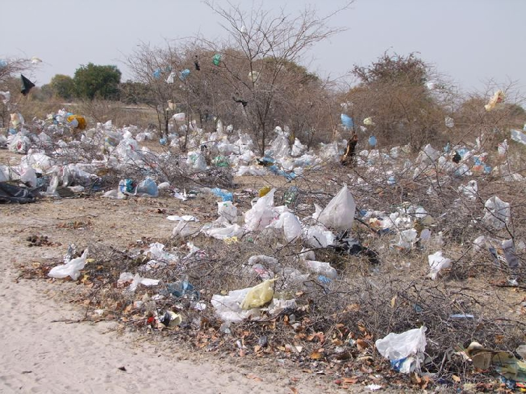 Progress Namibia - Plastic Bags. Let's stop.