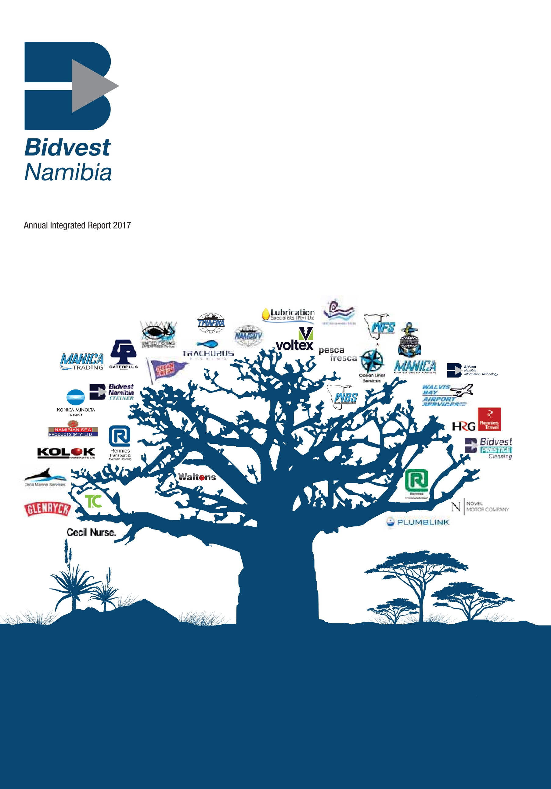 Annual Integrated Report 2017