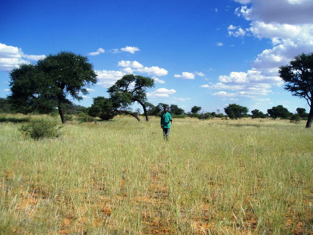 Progress Namibia - Ramblings and shared thoughts on land redistribution in Namibia
