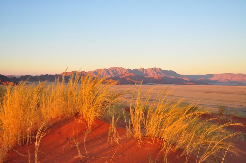 Red Kalahari Dunes