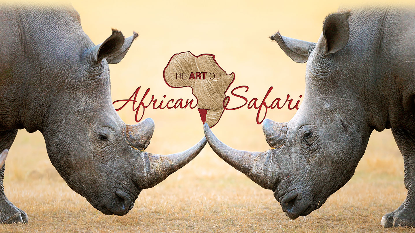 Art of African Safaris