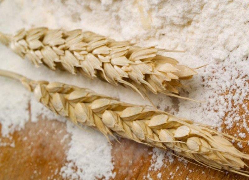Namib Mills (PTY) Ltd - Wheat Flour