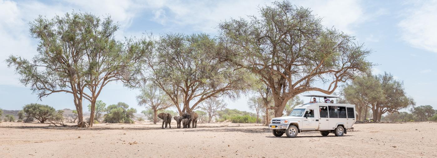 Geführte Safaris