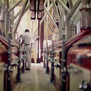 Namib Mills (PTY) Ltd - Wheat mill opened
